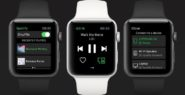 Spotify on Apple Watch lets you play, pause, rewind… an...